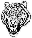 Tiger Head Photographie stock