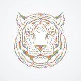 Tiger Head Image stock