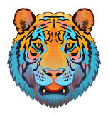 Tiger Head Images stock