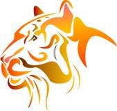 Tiger Head Photo libre de droits
