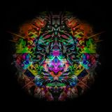 Tiger head on abstract background. Illustration of tiger head on abstract background Stock Illustration