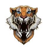 Tiger head on abstract background. Illustration of tiger head on abstract background royalty free illustration