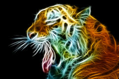 Tiger head. Abstract on black background. Royalty Free Stock Image