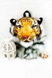 Tiger head bag Stock Photo