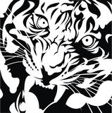 Tiger head black and white Royalty Free Stock Photo