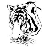 Tiger head black and white, Vector Royalty Free Stock Images
