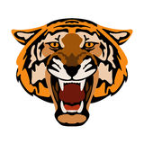 Tiger  head  face vector illustration style Flat Royalty Free Stock Photography