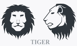 Tiger head front view and side view Royalty Free Stock Photo
