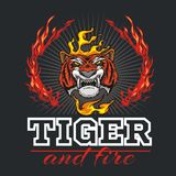 Tiger head hand and fire - vector illustration. Tiger head hand and flame on dark background - vector illustration Stock Photos