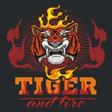 Tiger head hand and fire - vector illustration. Tiger head hand and flame on dark background - vector illustration Royalty Free Stock Photo
