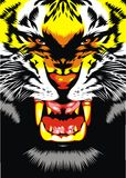 Tiger head. Illustrated tiger head on the black background Royalty Free Stock Images