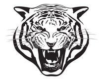 Tiger Head Illustratie Royalty-vrije Stock Foto's