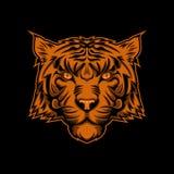 Tiger head illustration amazing design vector illustration vector illustration