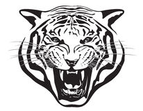 Tiger Head. Illustration. Royalty Free Stock Photos