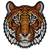Tiger head isolated Royalty Free Stock Photos