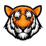 Tiger Head Logo Illustration Vector Front View illustration libre de droits