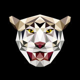 Tiger head low polygon vector. On black Royalty Free Illustration