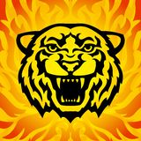 Tiger head mascot. In tattoo style on the fiery background. Stylized  illustration Royalty Free Stock Photo