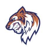 Tiger head mascot Royalty Free Stock Photos