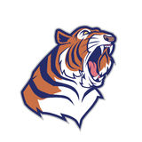 Tiger head mascot Stock Image