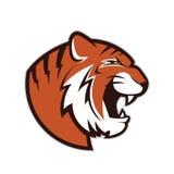 Tiger head mascot Stock Photos