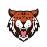 Tiger head mascot. Clipart picture of a tiger head cartoon mascot logo character royalty free illustration