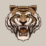 Tiger Head Mascot Illustration Vector nello stile del fumetto fotografia stock