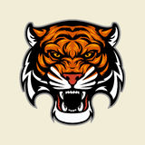 Tiger Head Mascot Stock Photo