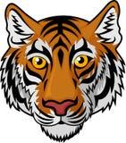 Tiger Head Mascot Team Sport-beeldverhaal Royalty-vrije Stock Fotografie