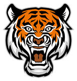 Tiger head mascot Royalty Free Stock Photos