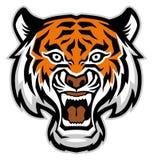 Tiger head mascot. Vector of tiger head mascot Royalty Free Stock Photos