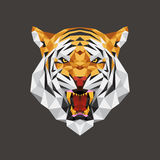 Tiger head polygon geometric, Vector illustration Royalty Free Stock Images