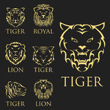 Tiger head royal badge with beautiful animal vector hand drawn lion face illustration. Royalty Free Stock Photos