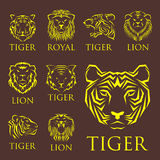 Tiger head royal badge with beautiful animal vector hand drawn lion face illustration. Stock Photo
