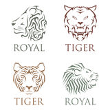 Tiger head royal badge with beautiful animal vector hand drawn lion face illustration. Royalty Free Stock Images