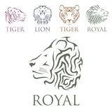 Tiger head royal badge with beautiful animal vector hand drawn lion face illustration. Royalty Free Stock Image