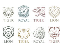 Tiger head royal badge with beautiful animal vector hand drawn lion face illustration. Royalty Free Stock Photo