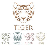 Tiger head royal badge with beautiful animal vector hand drawn lion face illustration. Royalty Free Stock Photography