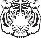 Tiger Head Silhouette. Stock Photos