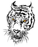 Tiger head silhouette and colorful with eye. Royalty Free Stock Photo