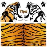 Tiger. Head silhouette. Print animal vector illustration