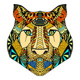 Tiger head sketch Royalty Free Stock Image