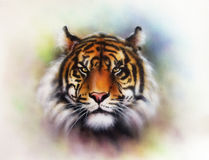 Tiger head on a soft toned abstract. Beautiful airbrush painting of a mighty fierce tiger head on a soft toned abstract background vector illustration