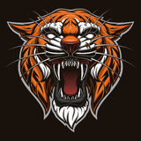 Tiger head vector Stock Image