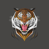 Tiger head, Vector illustration Stock Images