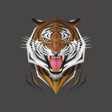 Tiger head, Vector illustration Stock Images