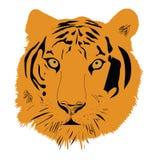 Tiger head vector illustration Royalty Free Stock Photo