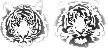 Tiger heads in gradient interpretation. In best quality Stock Photo
