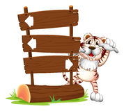 A tiger hiding at the back of a signboard Stock Photography