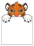 Tiger hold a poster Stock Image